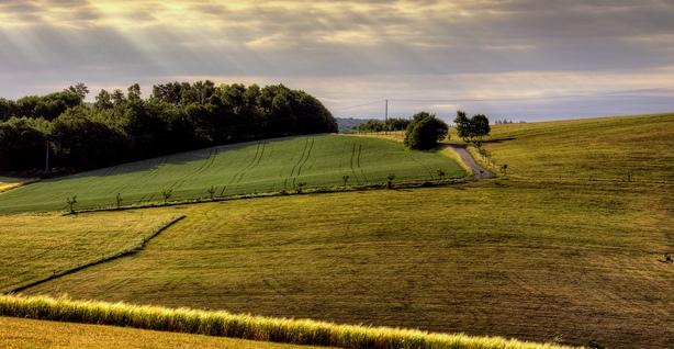 Налоги на земельные участки уплачиваются исходя из их кадастровой стоимости в ЕГРН