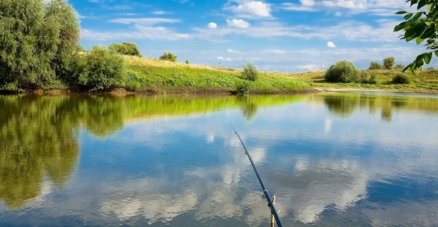 Верховный Суд РФ дал разъяснения об уголовной ответственности в сфере рыболовства, административных правонарушениях правил добычи водных биоресурсов и ответственности за нарушения в области охраны окружающей среды