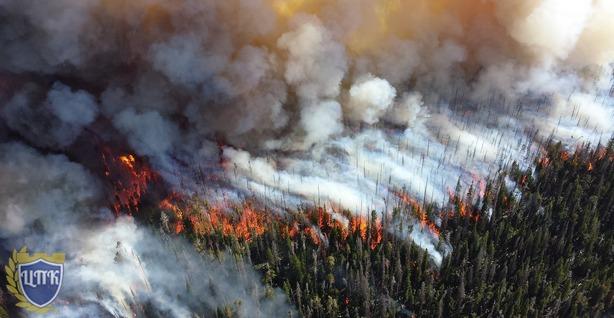 Приостановки работ по тушению лесных пожаров не будет